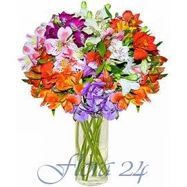 Доставка цветов в ровно доставка цветов пушкино джейн